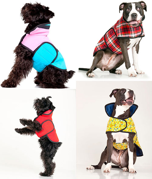 Muffinhead Dog Jacket examples