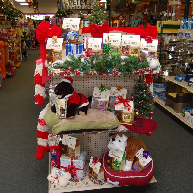 Our Instinct Christmas endcap